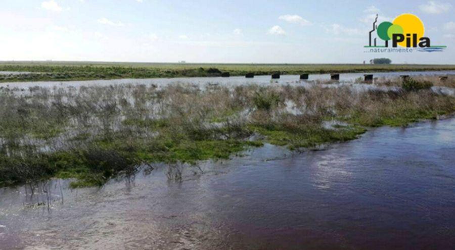 CANAL PILA 1
