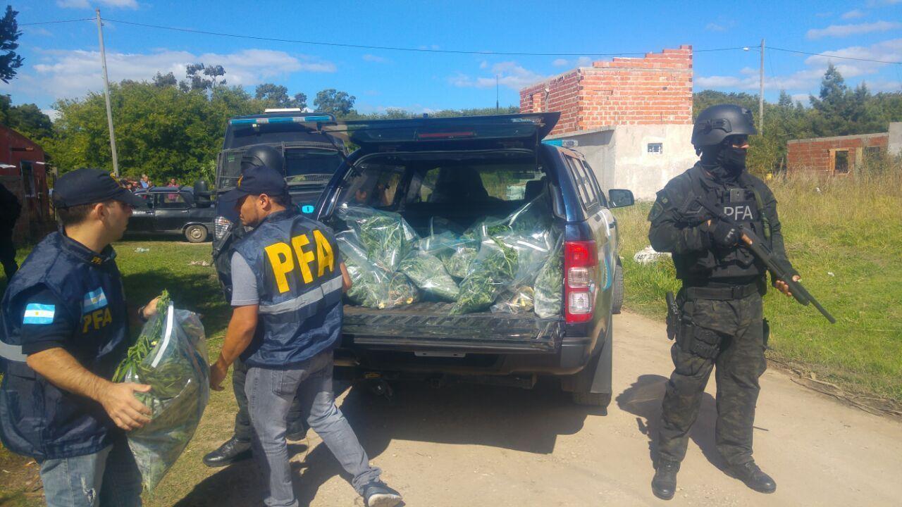 La polic a federal argentina desmantel un vivero de for Viveros en la plata