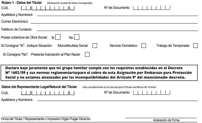 Cómo completar el formulario 2.67 ANSES