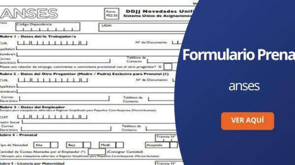 Formulario prenatal ANSES